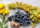 Les bienfaits de la cure du raisin