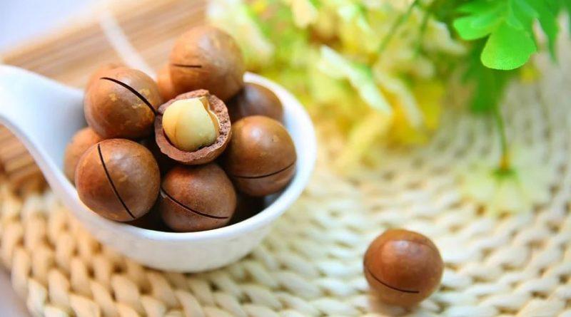 10 bonnes raisons de manger des noix